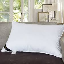 Pin By Julie Woeltje On Bedroom Pinterest Pillows Down Pillows