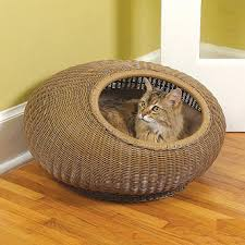Stylish Cat Bed Designer Beds for Cats
