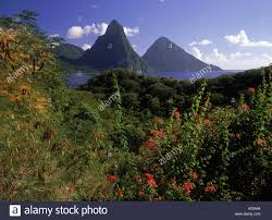 100 J Mountain St Lucia The Pitons Caribbean Miller Ock Photo 141924 Alamy