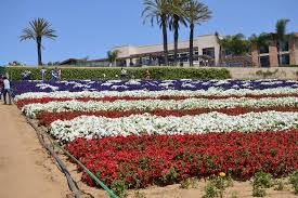 American Flag display Picture of Carlsbad Flower Fields