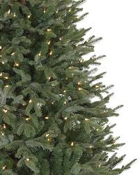 Slim Pre Lit Christmas Trees by Full Width Fraser Fir Artificial Christmas Trees Balsam Hill