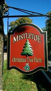 Pinecrest Christmas Tree Farm by Christmas Tree Farms Ma Photo Album Halloween Ideas