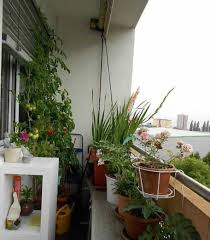Vegetable Garden Balcony Designs : House Balcony Designs ... Balcony Pergola Champsbahraincom Mornbalconyhomedesign Interior Design Ideas Glass Home Youtube Photos Hgtv Modern Bedroom Designs Cool Tips Start Making Building Plans Online 22980 Best 25 House Ideas On Pinterest House Balcony Stunning Homes With Pictures 35 Awesome Spaces Gardens Garden Brilliant Patio S Small Wonderful For Your Exterior Inspiring Enclosed Pergolas Covers