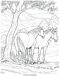 Arabian Horse Coloring Pages Mares And Foals