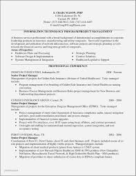 Information Technology Manager Resume Examples 2016 Best Of Modern Finance And Insurance Frieze Simple