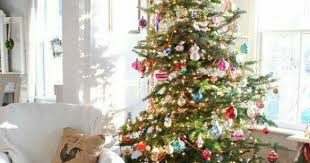 Christmas Tree Shop Natick Massachusetts by Christmas Tree Shops In Natick Ma Maine Christmas Pinterest
