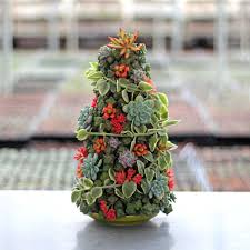 SUNCOM 6 Feet Christmas Tree Artificial Christmas Pine Tree Full