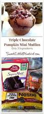 Pumpkin Cake Mix Bars by Best 25 Cake Mix Muffins Ideas On Pinterest Costco Cake Carrot