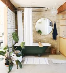 Best Bathroom Pot Plants by Indoor Plants That Won U0027t Meet Their Death In Your Bathroom
