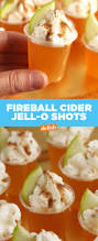 Night Owl Pumpkin Ale Clone by Fireball Cider Jell O Shots Recipe Beverage Alcohol And Food