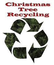 If You Had A Live Christmas Tree This Year And Now Wonder What To Do With It Recycle How Where Or Not Dispose Of Much Then