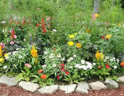 Rustic Garden Ideas Nz