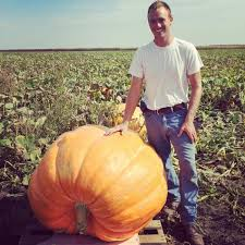 Pumpkin Picking Nj 2015 by Don U0027t Miss These 10 Great Pumpkin Patches In Illinois