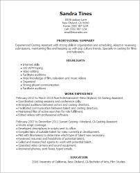 Media And Entertinment Resume Template