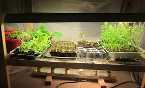 lighting water plants awesome grow light bulbs for indoor plants