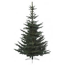 Christmas Tree 10ft by Superb 10 Artificial Christmas Tree Fine Design Home Accents