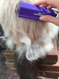Shedding Blade Vs Furminator by Equigroomer Grooming Tool For Pets Product Review