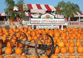Pumpkin Patch Irvine University by Top 4 Pumpkin Patches In Orange County Let U0027s Play Oc