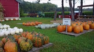Pumpkin Farms Wisconsin by Creekside Valley Farm Mequon Wisconsin Youtube