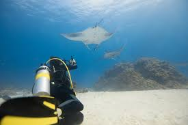 100 Conrad Maldives Underwater Hotels The Ultimate Experience The