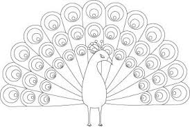 Pretty Peacock Coloring Page For Kids