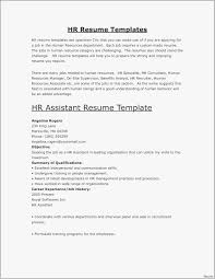 Resume Examples 2017 Best Professional