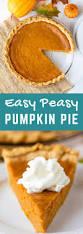Easy Pumpkin Desserts With Few Ingredients by Easy Homemade Pumpkin Pie