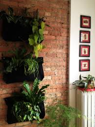 Best Plant For Bathroom Australia by 5 Fragrant Plants For A Small Space Apartment Therapy