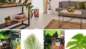 sommerdeko im jungle trend dschungel im wohnzimmer