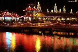 Bellevue Singing Christmas Tree by Ivar U0027s Clam Lights In Renton