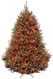 10 Foot Artificial Fraser Fir Christmas Tree by Amazon Com National Tree 7 5 Foot Natural Fraser Fir Tree With
