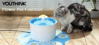 water for cats youthink auto circulating bpa free 1 6l indoor water