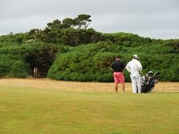 Pumpkin Ridge Golf Ghost Creek by Oregon Best Golf Course Wiscogolfaddict