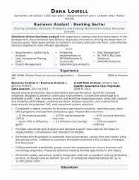 Professional Summary Resume Examples Elegant Business Analyst Sample Of