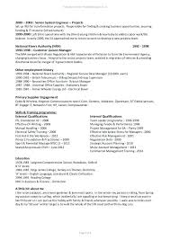 It Project Manager Resume Management Sample