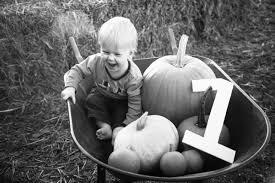 Maze Pumpkin Patch Evansville In by Pumpkin Patch Kids Pumpkin Patch Pictures Pumpkin Patch