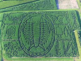 Top Pumpkin Farms Wisconsin by North America U0027s 9 Best Corn Mazes To Visit Koa Camping