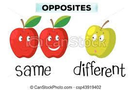 Opposite Words For Same And Different Vector