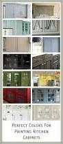Paint Colors For Cabinets by Kitchen Cabinets Color Selection Cabinet Colors Choices 3 Day
