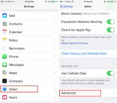 How To Delete Website Specific Data From Safari iOS