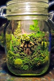 Star Wars Themed Aquarium Safe Decorations by Tiny Star Wars Terrariums Bring Far Away Galaxies Into Your Home