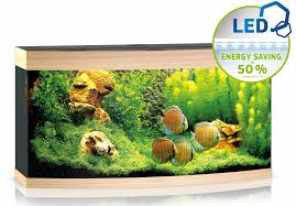 juwel aquarium vision 260 juwel vision 260 led aquarium gardensite co uk