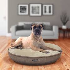Poochplanet Dog Bed by Dog Beds Costco