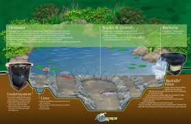 Aquascape Patio Pond Canada by Certified Aquascape Contractor Domina U0027s Agway Domina U0027s Agway