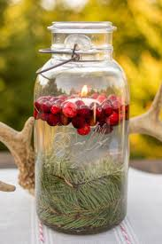 Wyckoff Christmas Tree Farm by Best 25 Cranberry Farm Ideas On Pinterest Easy Cranberry Sauce