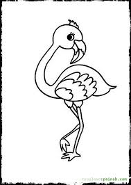 Baby Bird Flamingo Coloring Pages