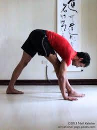 Triangle Pose Forward Fold Parsvottanasana