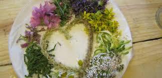 cuisine plantes sauvages plantes sauvages cueillette cuisine et produits de bien être
