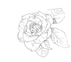 Simple Rose Outline Half Sleeve Tattoos Bow Drawing