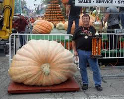 Circleville Pumpkin Festival by Winning Pumpkin In Circleville Tops 1 500 Pounds Entertainment